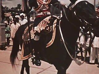 Scurrilous Maharaja Celebratory